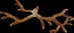 MRD_SnowyDreams-twigs2.png