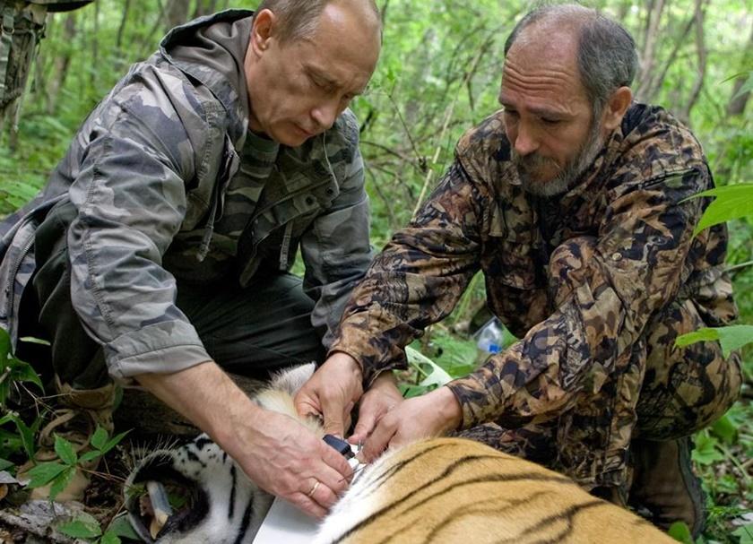 Хабаровский охотник вышел живым после схватки с тигром