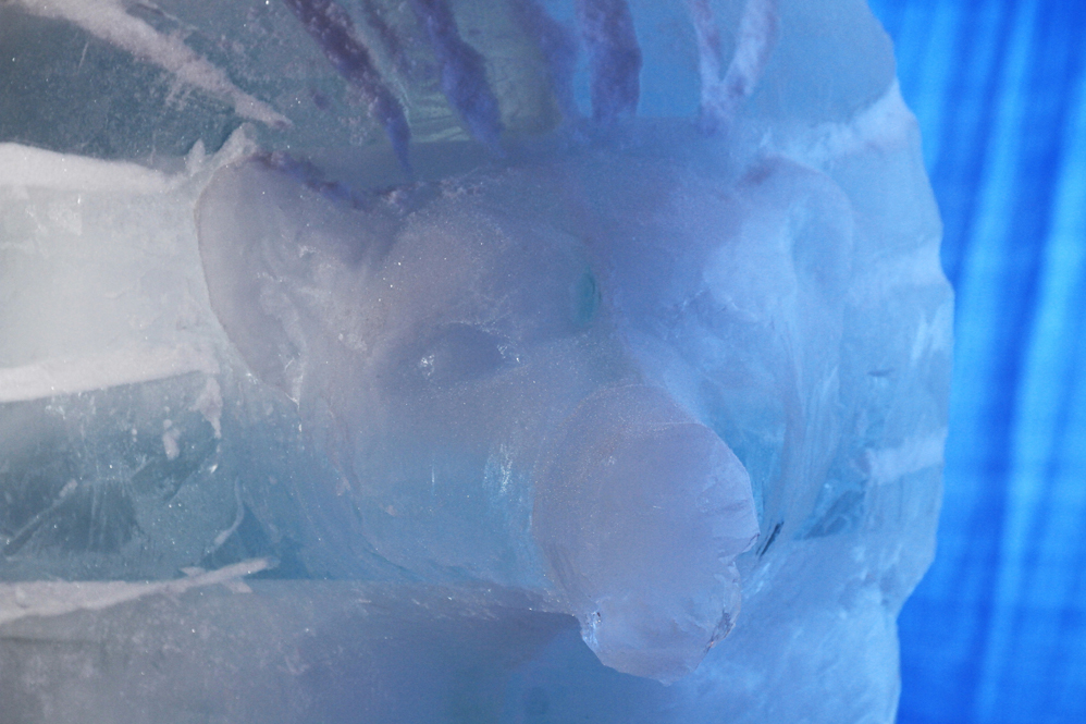 Снежное королевство 2013 - фото 8