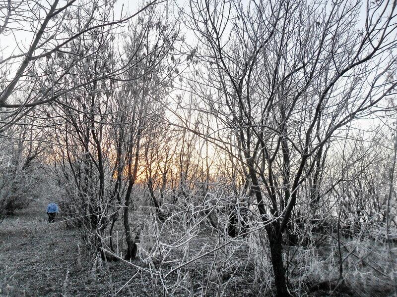 Зимний поход, 2 января 2013