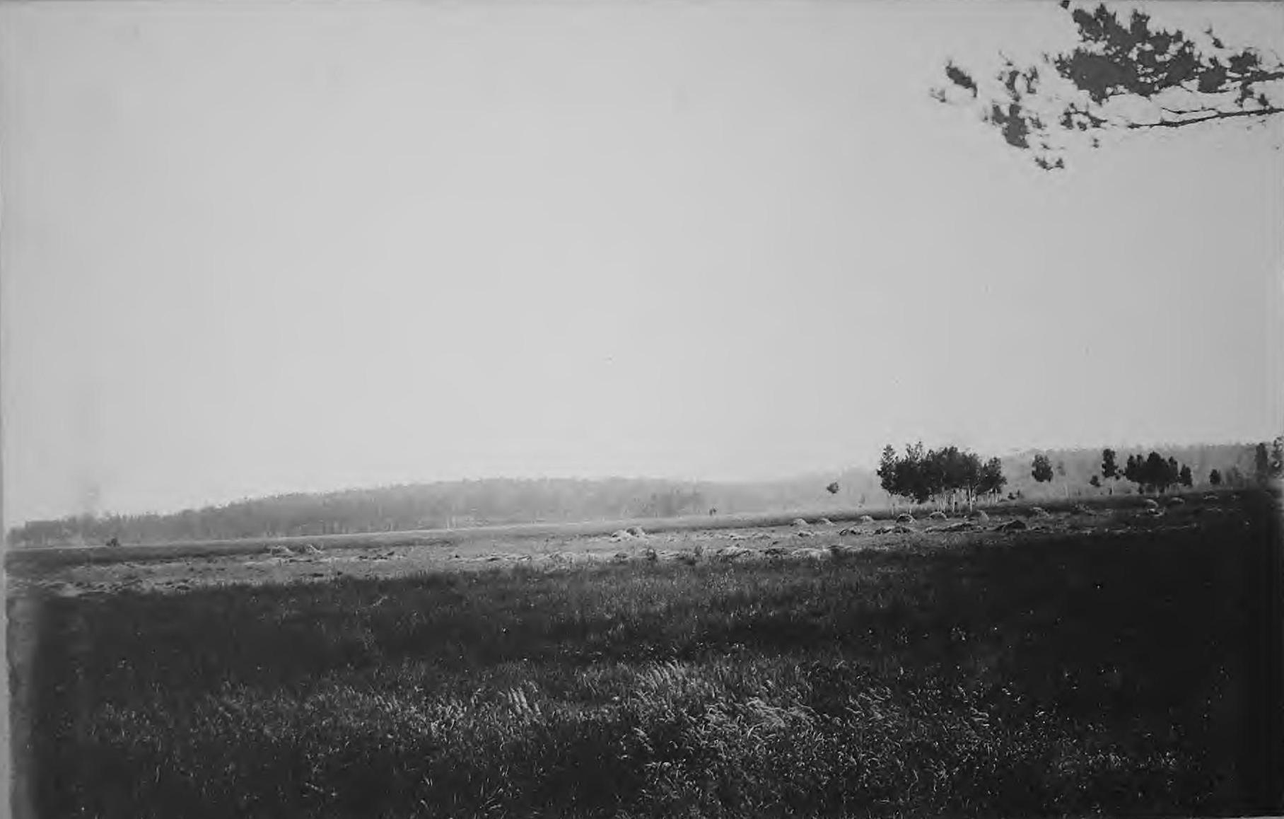 Мари на реке Селемдже