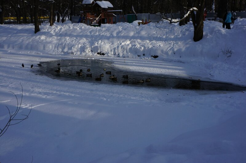 Снежное Королевство в Кузьминках