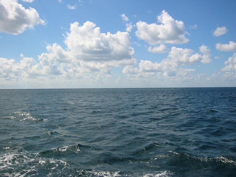 Откуда появилась море