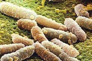 Учёные предсказывают конец эры антибиотиков