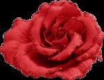 Valentine s day_день влюбленных (82).png