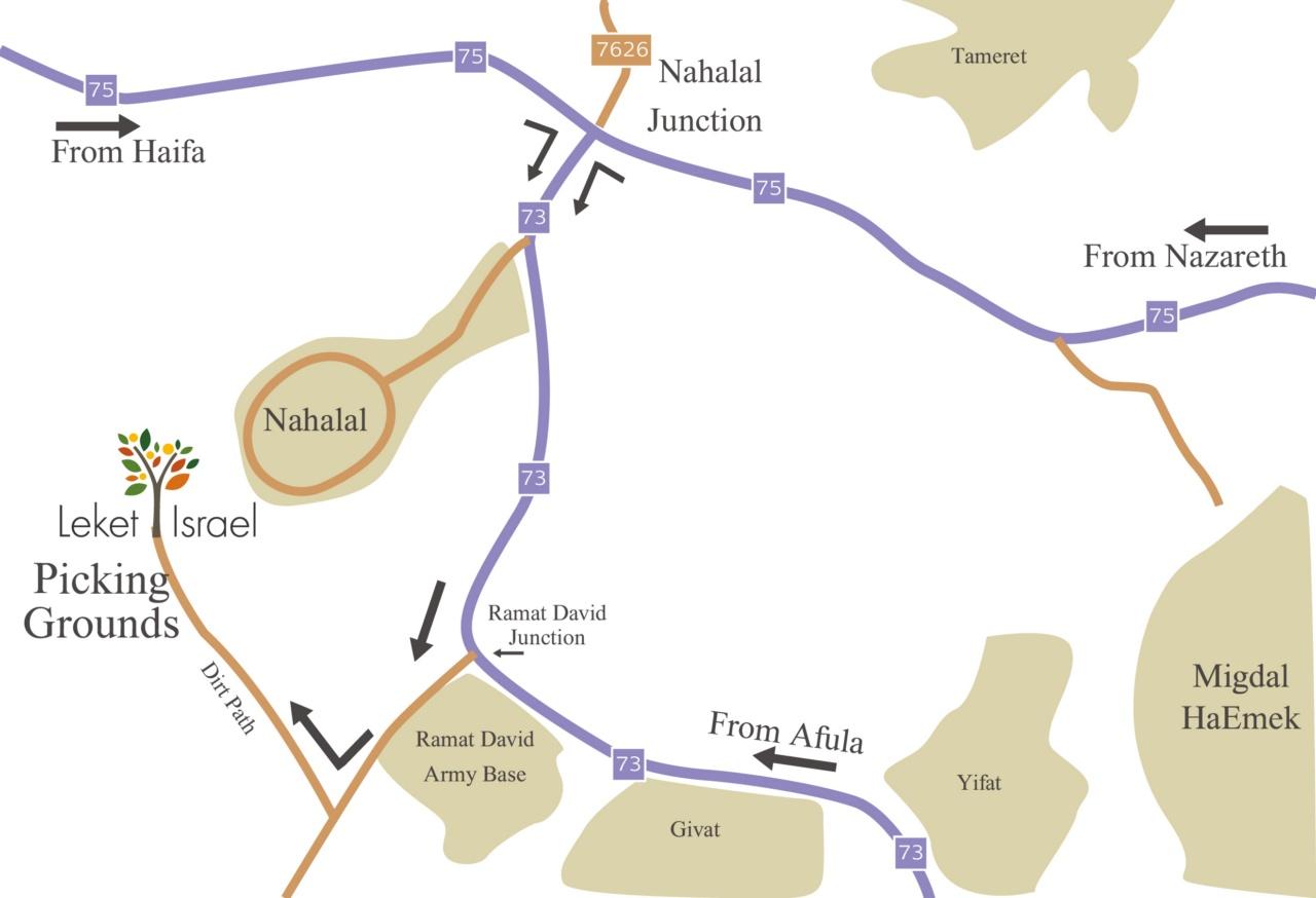 מפה לנהלל