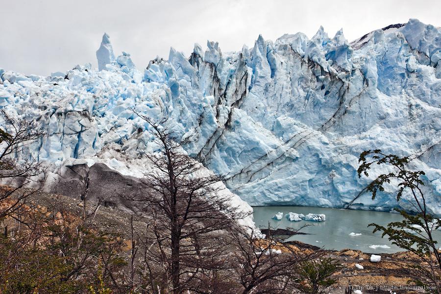 16. Устоявший перед потеплением. Ледник Перито Морено.