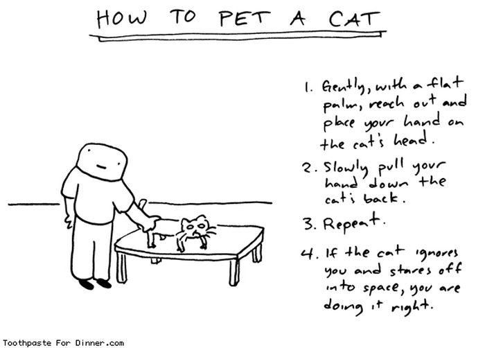 Смешные комиксы про котов на английском языке 0 c6da4 cfa8e70e orig