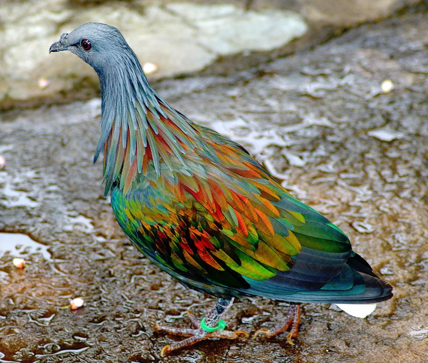 Невероятные фотографии природы, сделанные без использования Photoshop 0 1432c5 e1ff27ff orig