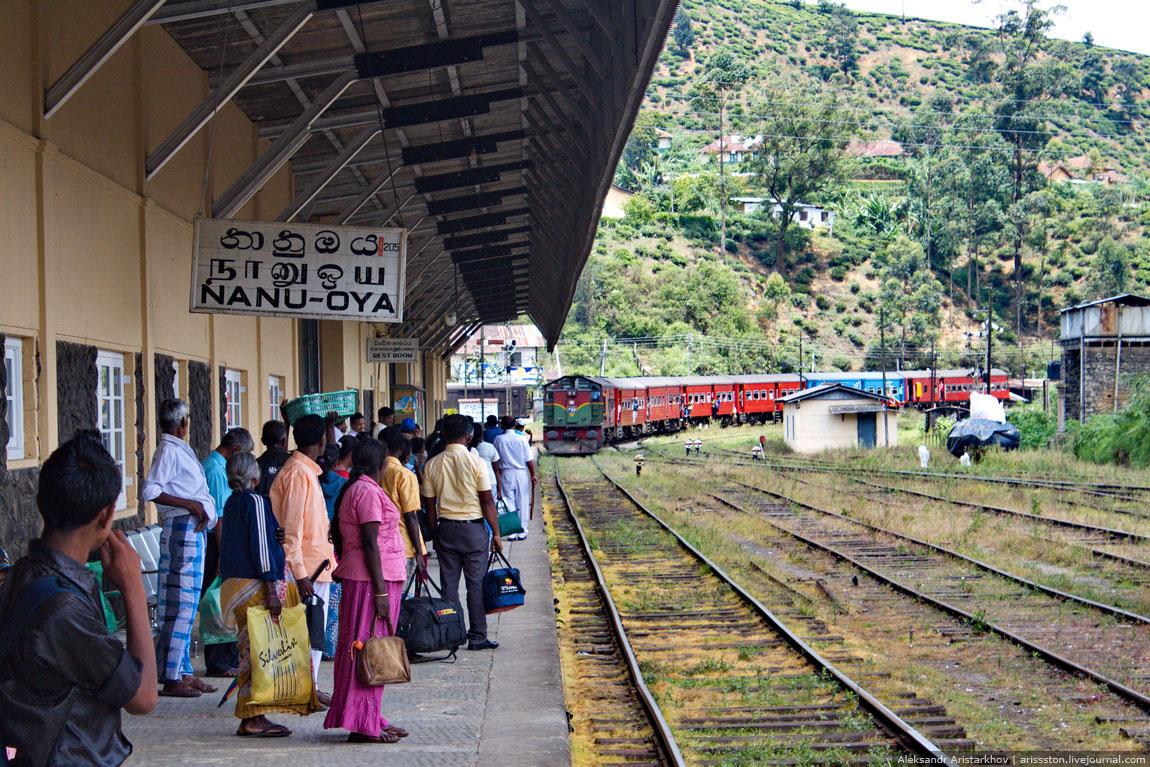 Шри-Ланка_Железная дорога_12