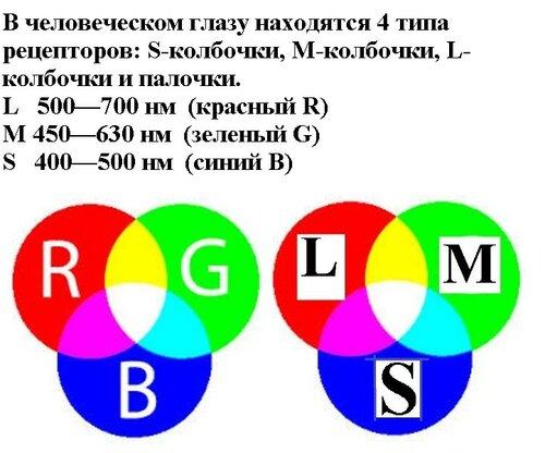 Новые картинки в мироздании 0_9a590_c5e487bd_L