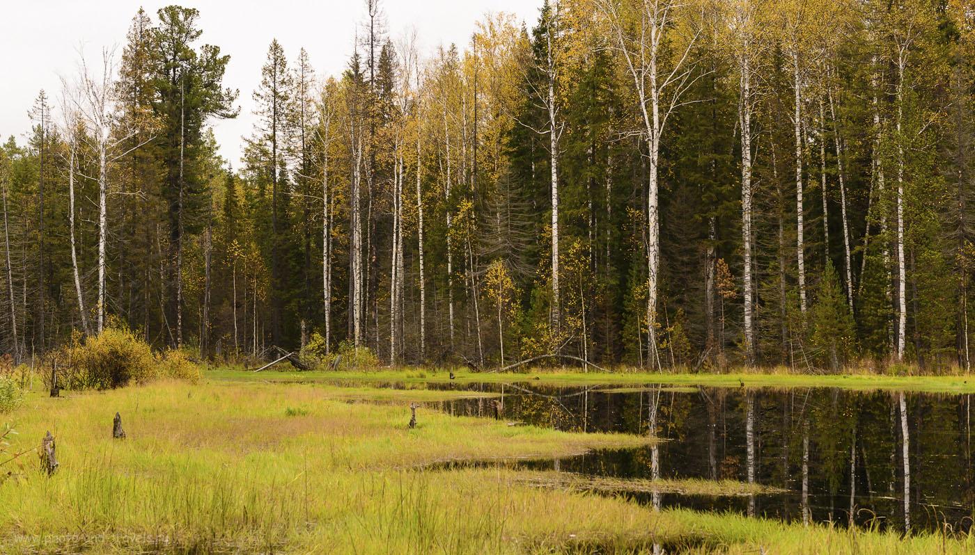 Фото 4. Пешие походы. Лесное озеро, от которого начинается поход к горе Семибратской. 400, 24, 8.0, 1/500