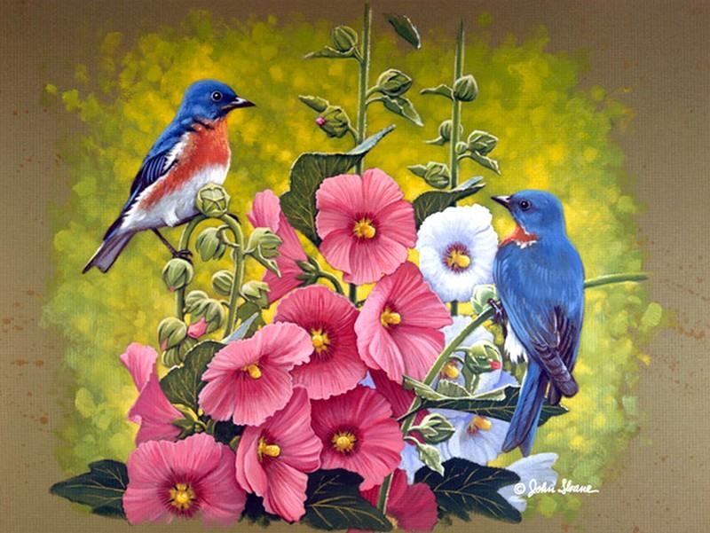 рисунки красивых птиц на цветах есть