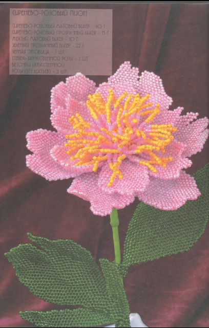 Схема Сиренево-Розового пиона