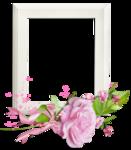cluster__frame  (13).png