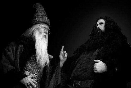 Альбус Дамблдор и Хагрид