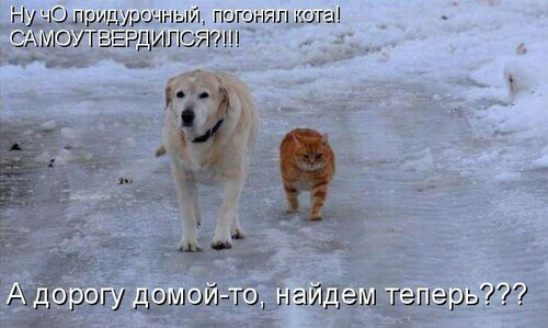 http://img-fotki.yandex.ru/get/6429/194408087.1/0_9085d_cc32bcf_L.jpg