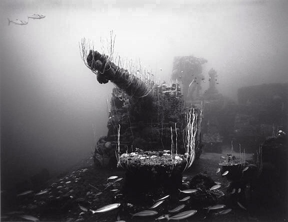 Подводный мир подводные фото