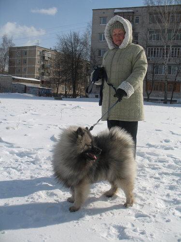 https://img-fotki.yandex.ru/get/6429/37228632.5/0_7d32e_b1b62e1a_L.jpg