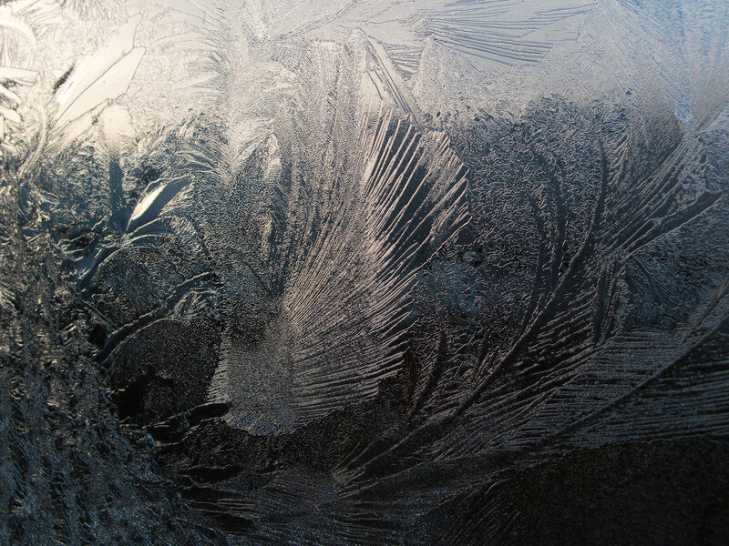 Крылатка в морозном аквариуме