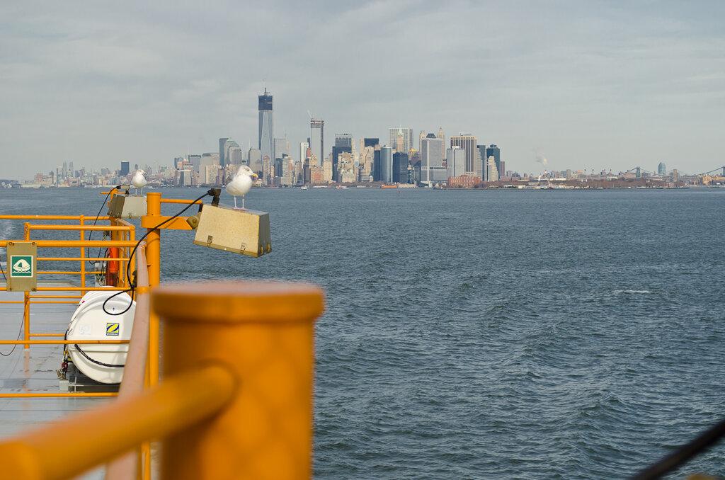 Фотоохота на чаек во время путешествия на пароме мимо Статуи Свободы в Нью Йорке. Использована любительская зеркалка Nikon D5100 KIT 18-55mm f/3.5-5.6.