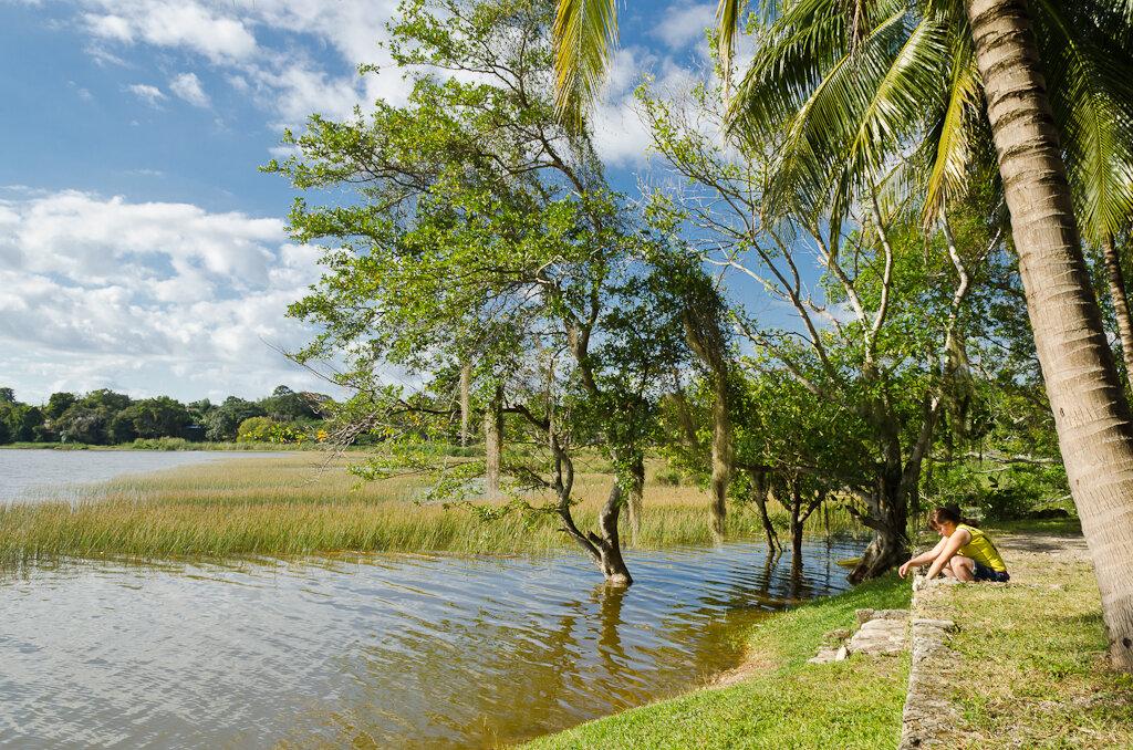 16. Аленушка у мексиканского болота. Самостоятельный отдых на полуострове Юкатан