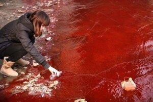 Красная река — экологическая катастрофа в Украине