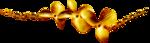 feli_l_flowers on golden chain.png