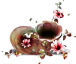 feli_l_flowers and leaves embelliesh.png