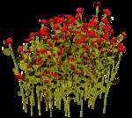 Lug_Grass_Flower (34).png