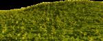 Lug_Grass_Flower (61).png