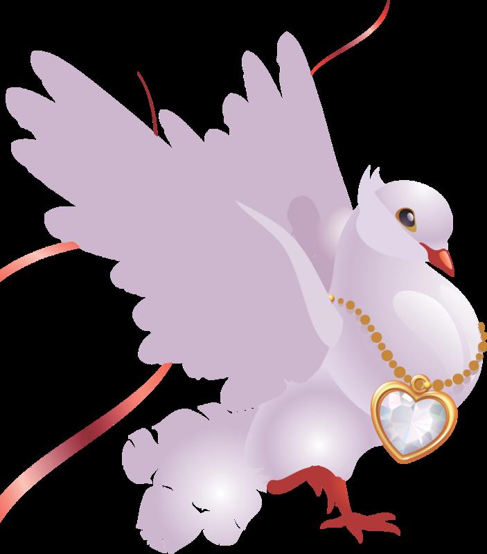 Брату лет, открытка голубь на сердце