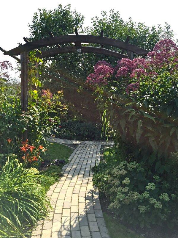 Сад Екатерины Локшиной
