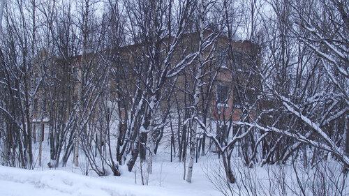 Фотография Инты №2854  Юго-восточный угол Коммунистической 22 31.01.2013_13:37