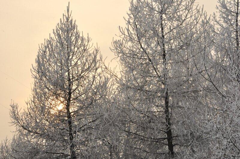 http://img-fotki.yandex.ru/get/6430/25708572.7e/0_90ec3_867bbdd1_XL.jpg