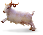 TurningLeafApothecary_LorieD_c_Sir_Gilbert_Goat1aa.png