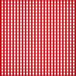aw_picnic_gingham red.jpg
