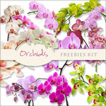 freeorchids kit