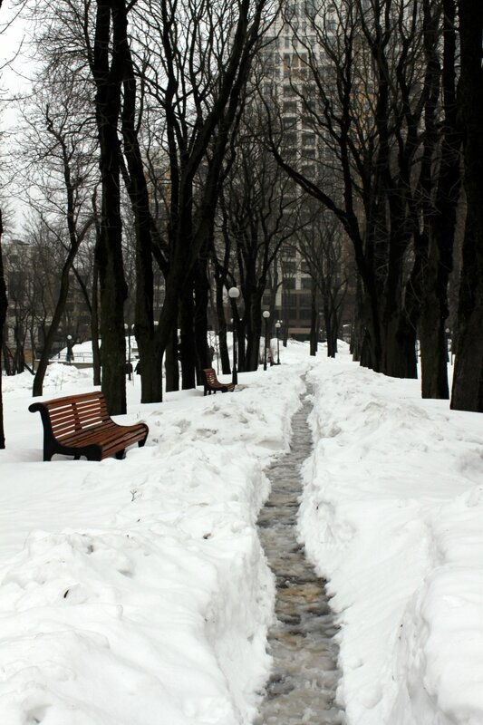Тропа по снегу в Мариинском парке