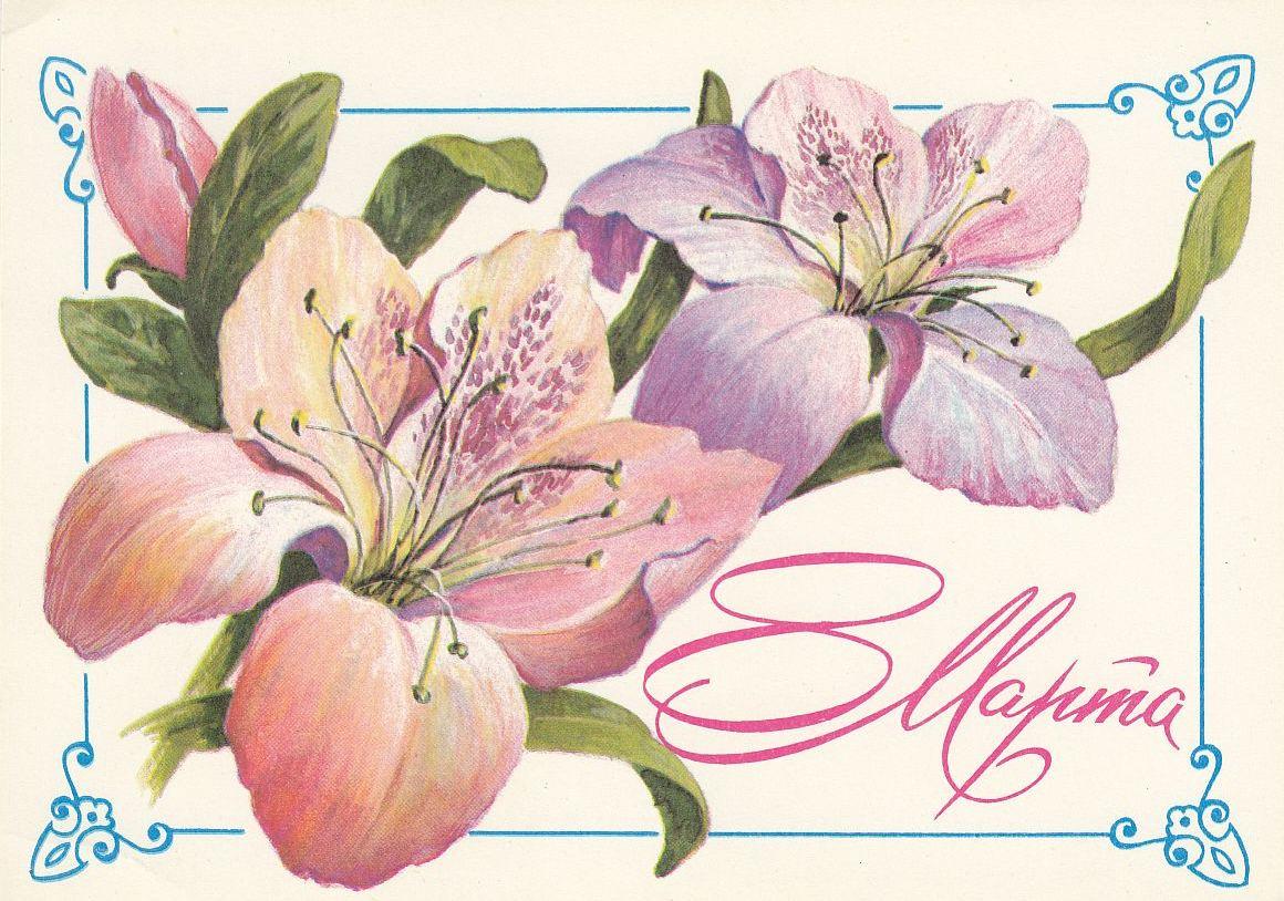 открытки на 8 марта с цветами лилиями спецустройства мужчина объяснил