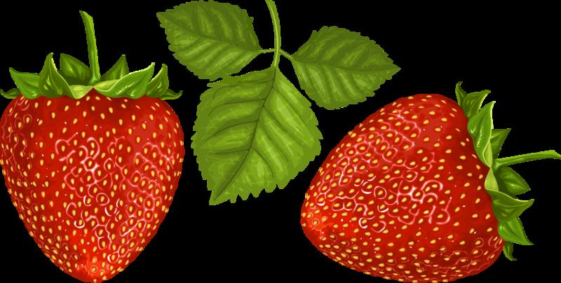 ягоды (3).png