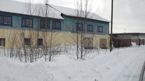 Фотография Инты №3994  Северная сторона Пролетарской 13 17.03.2013_13:21