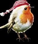 ldavi-feathersandmittens-littlerobin4.png