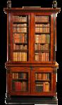 bookshelves17.png