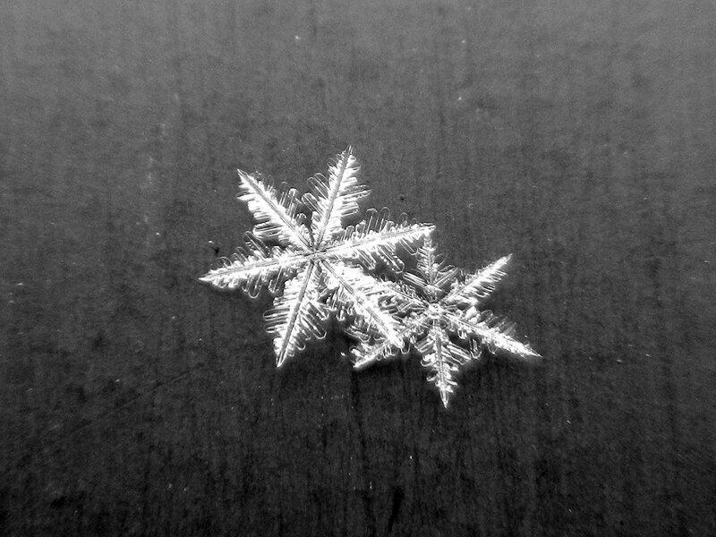 снежинка DSCN1262.jpg