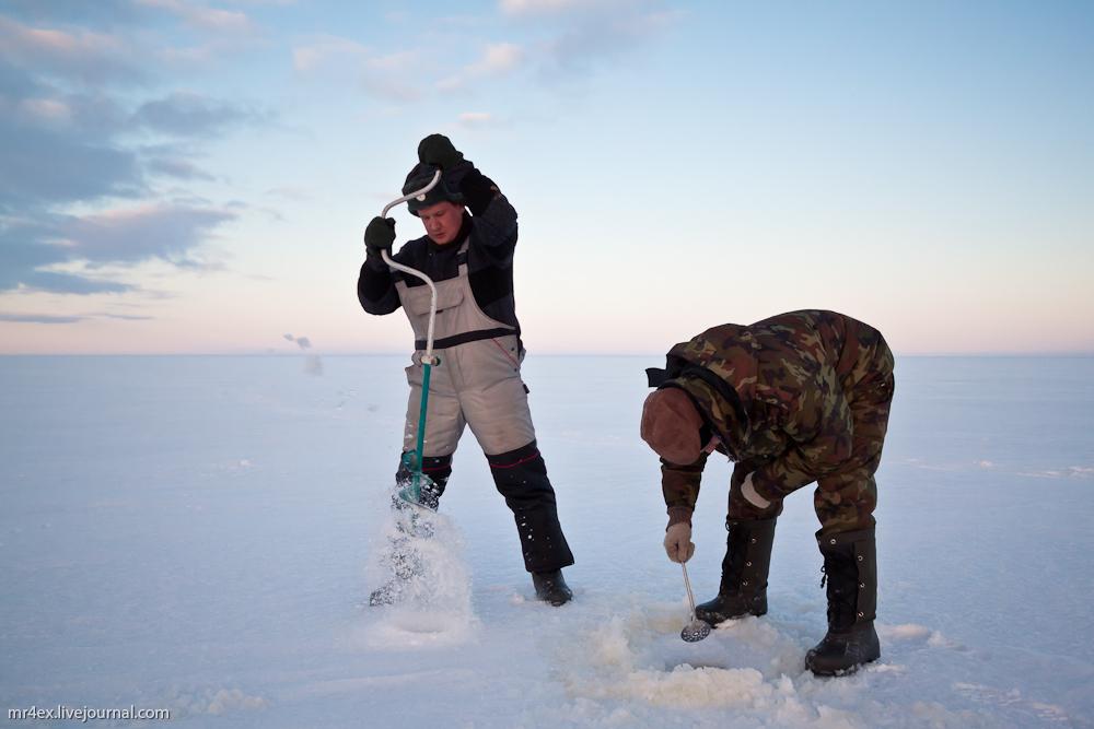 Зимняя рыбалка на Чудском озере