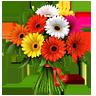 http://img-fotki.yandex.ru/get/6431/84094459.e/0_83770_c10b032f_XS.jpg