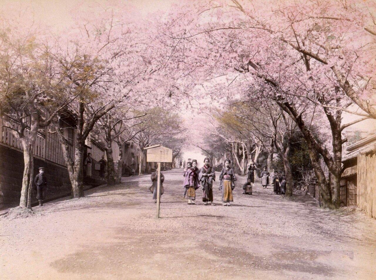 Йокогама, Япония. 1890 г.