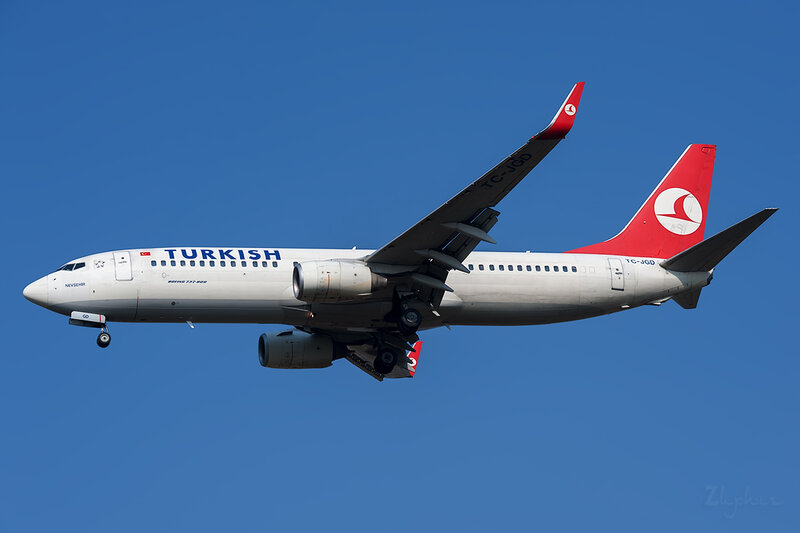 Boeing 737-8F2 (TC-JGD) Turkish Airlines DSC6612