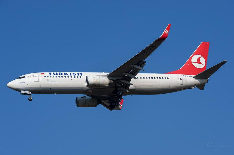 Boeing 737-8F2 (TC-JGD) Turkish Airlines DSC6612